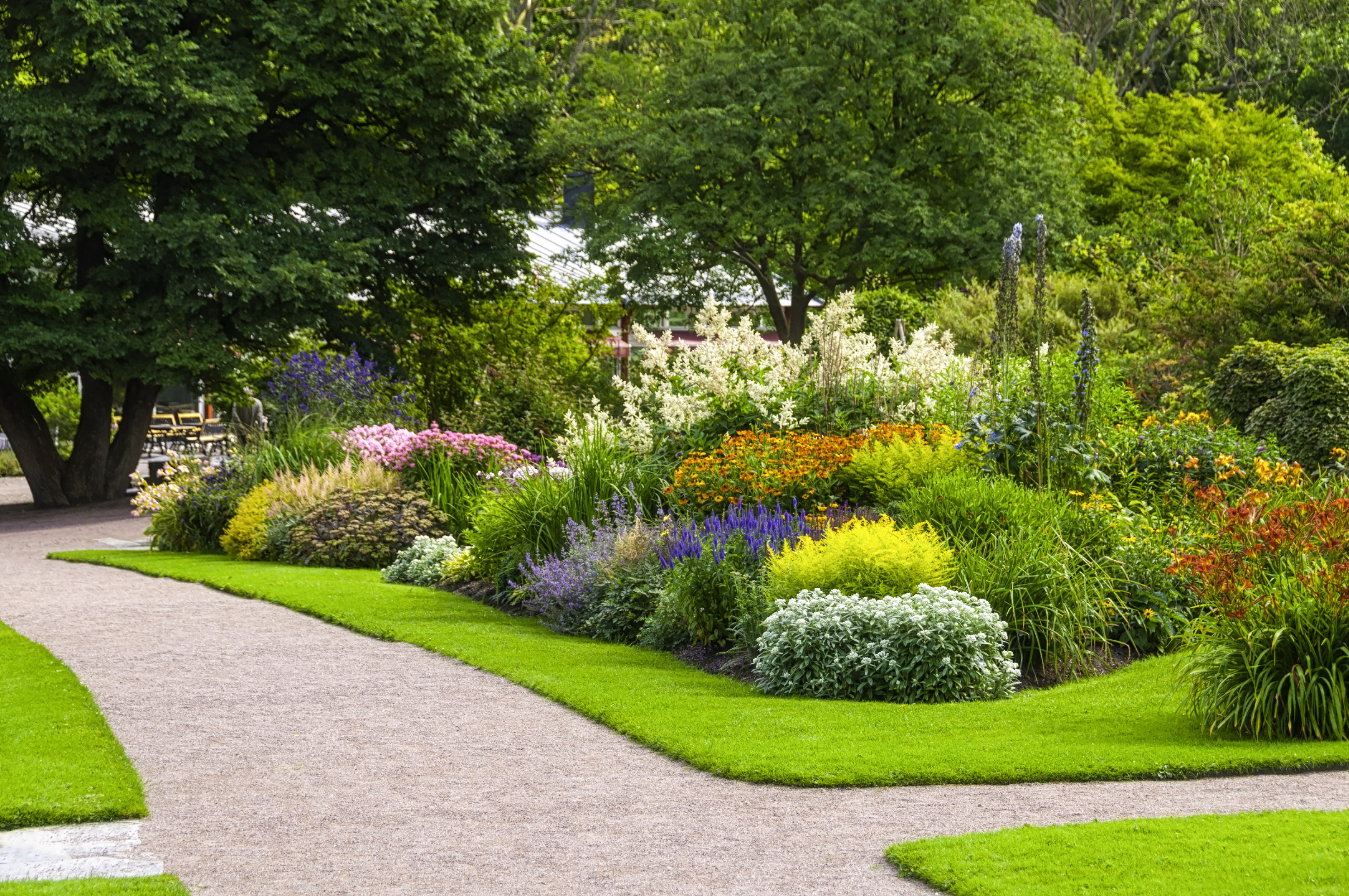 Plants For The Landscape Specialization Horticulture Gardening